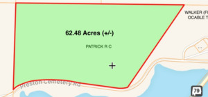Land Selling For The Patrick Estate, Jackson & Marshall Co., Ala.