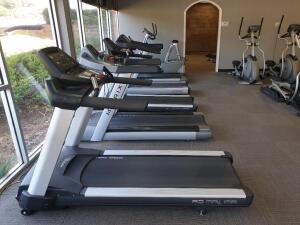 24 and More - Complete Gym and Exercise Equipment Sale in 1 Lot