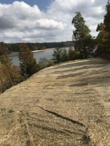 ABSOLUTE AUCTION - Smith Lake residential Lot
