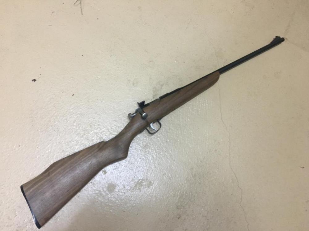 Rogue Rifle